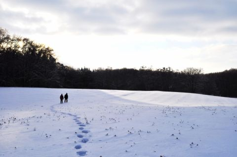 Bei einer Wanderung durch den Müritz-Nationalpark