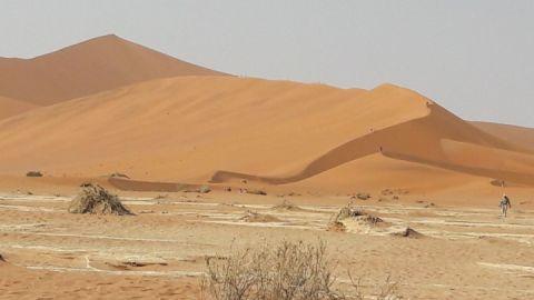 Sossusvlei in der Namib