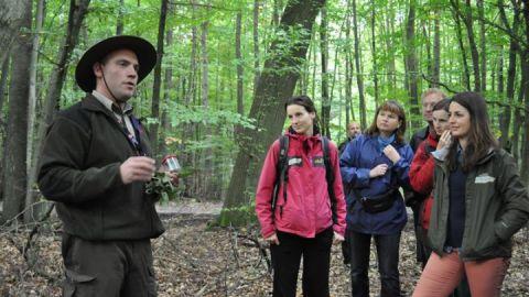 Ranger Sebastian Krage kennt die Serrahner Wälder wie seine Westentasche