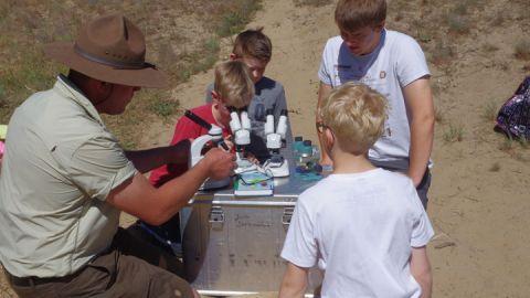 Freiwilliges Ökologisches Jahr (FÖJ) im Müritz-Nationalpark