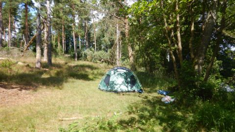 Wildcampen ist im Nationalpark verboten. Rechtzeitig den Camping- oder Stellplatz buchen verhindert unnötigen Ärger.