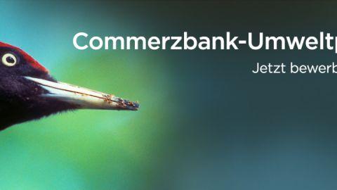Praktikumsbanner der Commerzbank für das Umweltpraktikum mit Frist 15.01.2021