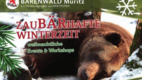 Winter-Workshops und Events im BÄRENWALD