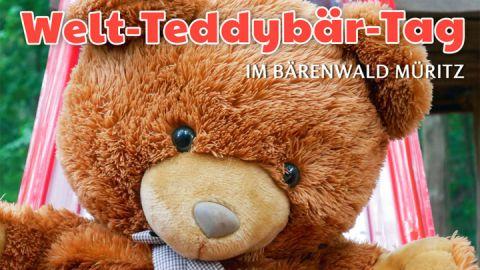 Teddy-Tag Bärenwald